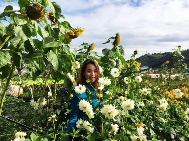 Photo of Flowers in La Trinidad