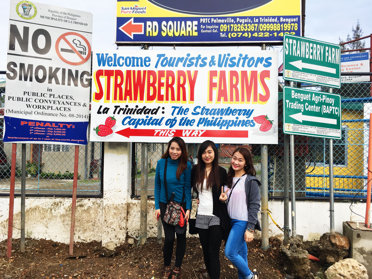 Photo of Welcome Sign in La Trinidad Strawberry Farm