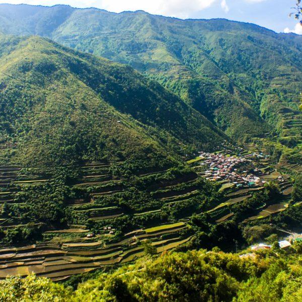 Apo Whang Od Buscalan, Tinglayan, Kalinga