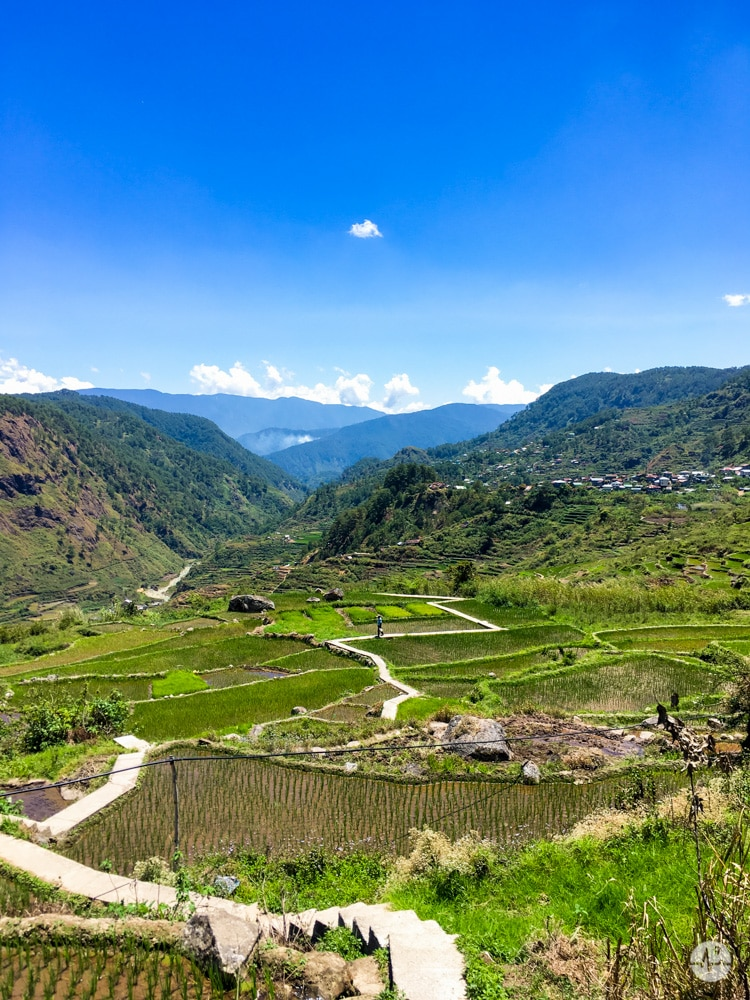 Photo of Pide Rice Terraces in Sagada, Mountain Province
